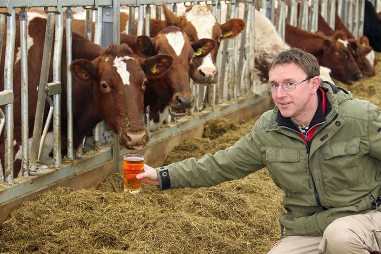 Organic farming and the use of antibiotics