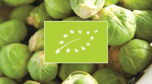 EU organic green leaf flag